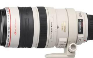 Краткий обзор Canon EF 400mm f/5.6L USM — Октябрь 2017