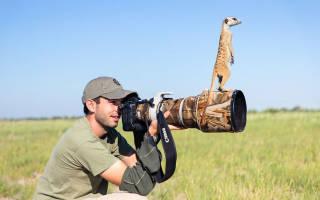 Краткий обзор Canon EOS 800D Kit — Июль 2020