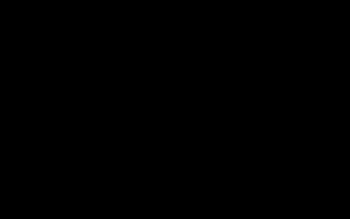 Краткий обзор Sony FDR-AX53 — Июнь 2019