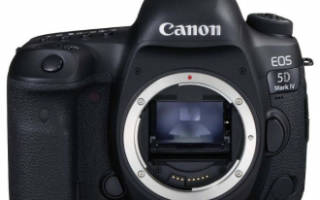 Краткий обзор Canon EOS 5D Mark IV Body — Сентябрь 2017
