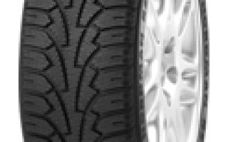 Описание автомобильных шин Nokian Nordman RS