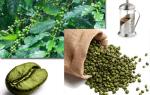 Польза и вред зеленого кофе глазами ученых и экспертов