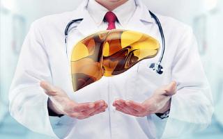 Рейтинг 7 лучших препаратов для печени — ТОП 7