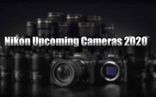 Краткий обзор Nikon Forestry Pro — Январь 2020