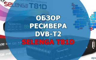 Краткий обзор Selenga T81D — Ноябрь 2019