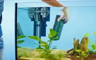 6 лучших фильтров для аквариума