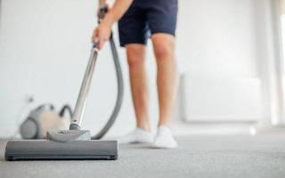 15 лучших пылесосов с мешком для сбора пыли — Рейтинг 2020 года (Топ 15)