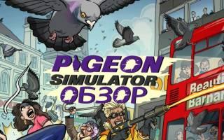 Краткий обзор Pigeon — Октябрь 2019